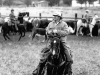 carbondale_colorad_cattle_drive_crtsy_mt_sopris_historical_so